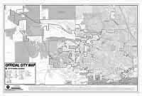 Large City Map Grayscale PDF
